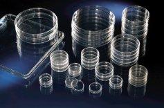 Nunc  Zell- und Gewebekulturschalen, Nunclon™ Δ Oberfläche