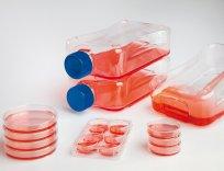 Nunc  Zellkulturflaschen, 300 cm2